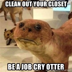 Sad Otter - Clean out your closet Be a job cry otter