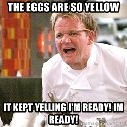 Chef Ramsey - The eggs are so yellow It kept yelling I'm ready! Im Ready!