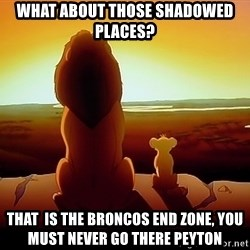 simba mufasa - what about those shadowed places?  That  is the broncos end zone, you must never go there Peyton