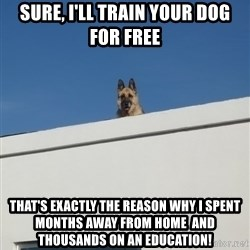 Roof Dog - Sure, I'll train your dog for free That's exactly the reason why I spent months away from home  and thousands on an education!