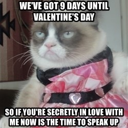 Valentines Day Tard - We've got 9 days until Valentine's day So if you're secretly in love with me now is the time to speak up