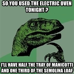 Philosoraptor - So you used the electric oven tonight ? I'll have half the tray of manicotti and one third of the semolina loaf