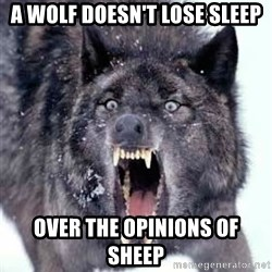 Angry Ass Wolf - A Wolf doesn't lose sleep Over the opinions of sheep
