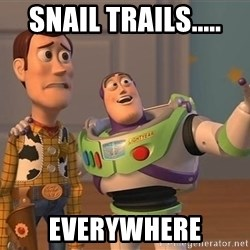 Anonymous, Anonymous Everywhere - Snail trails..... everywhere
