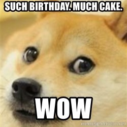shibe doge - such birthday. much cake. wow