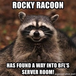 racoon - Rocky RAcoon Has Found A way Into BFL's Server Room!
