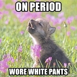 Baby Insanity Wolf - On period Wore white pants