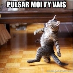 walking cat - pulsar moi j'y vais
