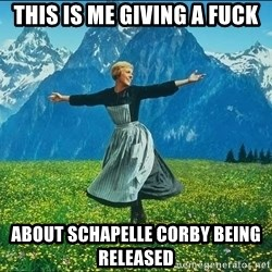Look at all the things - This is me giving a fuck about schapelle corby being released