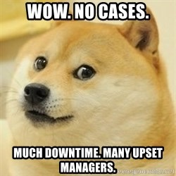 Real Doge - WOW. No cases. Much downtime. many upset managers.