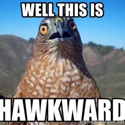 oops hawkward - Well this is