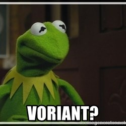 Kermit The Frog h -  Voriant?