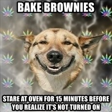 Original Stoner Dog - bake brownies stare at oven for 15 minutes before you realize it's not turned on