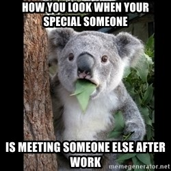 Koala can't believe it - How you look when youR SPECIAL SOMEONE IS MEETING SOMEONE ELSE AFTER WORK