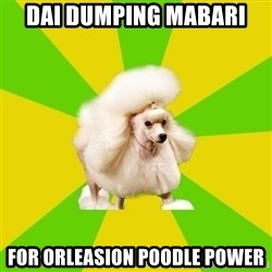 Pretentious Theatre Kid Poodle - dai dumping mabari for orleasion poodle power