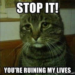 Depressed cat 2 - Stop it! You're ruining my lives