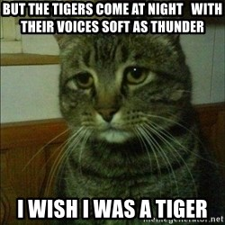 Depressed cat 2 - But the tigers come at night   With their voices soft as thunder I wish i was a tiger