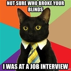 Business Cat - not sure who broke your blinds I was at a job interview