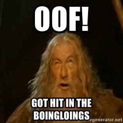 Gandalf You Shall Not Pass - OOF! Got hit in the  boingloings