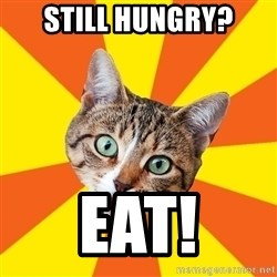 Bad Advice Cat - STILL HUNGRY? EAT!