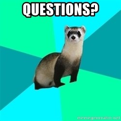 Obvious Question Ferret - Questions?