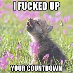 Baby Insanity Wolf - i fucked up your countdown
