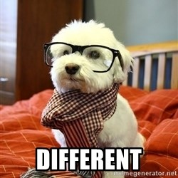 hipster dog -  different