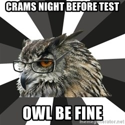ITCS Owl - crams night before test owl be fine