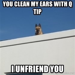 Roof Dog - You clean my ears with q tip  I unfriend you