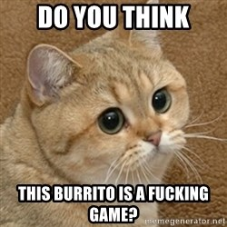 motherfucking game cat - Do you think This burrito is a fucking game?