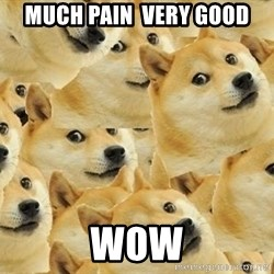 so dogeee - MUCH PAIN  VERY GOOD                               WOW