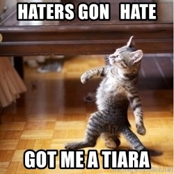haters gonna hate cat - Haters gon   hate   got me a tiara
