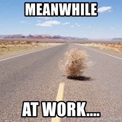 Meanwhile Tumbleweed - Meanwhile At Work....