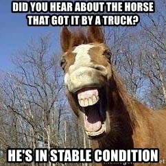 Horse - DId you hear about the horse that got it by a truck? He's in stable condition