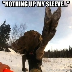 """Peace Out Moose - """"NOTHING UP MY SLEEVE..."""""""