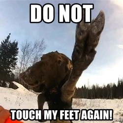 Peace Out Moose - do not touch my feet again!