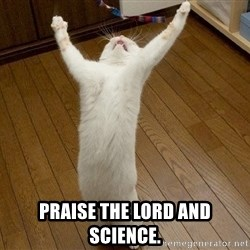 praise the lord cat -  praise the lord and science.