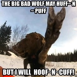 Peace Out Moose - The big bad wolf may huff~ n ~ puff But I will  Hoof~n~Cuff!