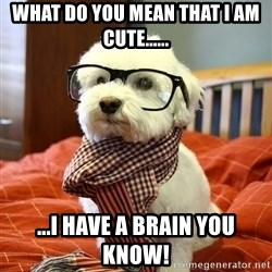 hipster dog - wHAT DO YOU MEAN THAT I AM CUTE...... ...I HAVE A BRAIN YOU KNOW!