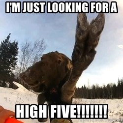 Peace Out Moose - I'm just looking for a  HIGH FIVE!!!!!!!