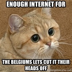 motherfucking game cat - enough internet for  the belgiums lets cut it their heads off