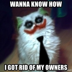JokerCat - Wanna know how  i got rid of my owners