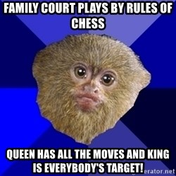 MRA Marmoset - FAMILY COURT PLAYS BY RULES OF CHESS QUEEN HAS ALL THE MOVES AND KING IS EVERYBODY'S TARGET!