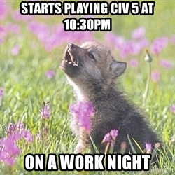 Baby Insanity Wolf - starts playing civ 5 at 10:30pm on a work night