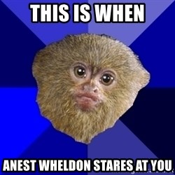 MRA Marmoset - THIS IS WHEN ANEST WHELDON STARES AT YOU