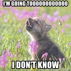 Baby Insanity Wolf - i'm going toooooooooooo I don't know