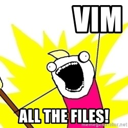 X ALL THE THINGS -             VIM            All the files!
