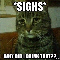 Depressed cat 2 - *Sighs* Why did I Drink that??