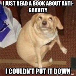 Oh You Dog - I just read a book about Anti-Gravity I couldn't put it down