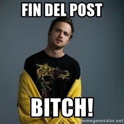 Jesse Pinkman - Fin del post bitch!